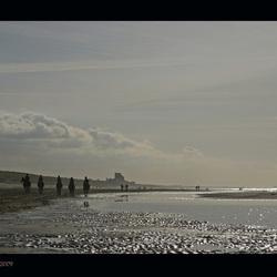 Strand met tegenlicht... en paarden