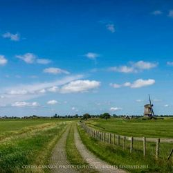 A day in the fields of Holland