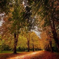 In het park
