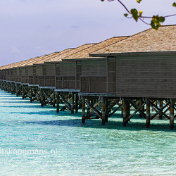 Repeterende huisjes op Meeru Island