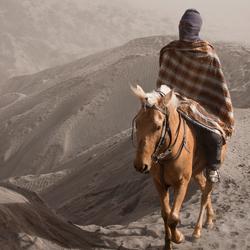 Bromo Horseback
