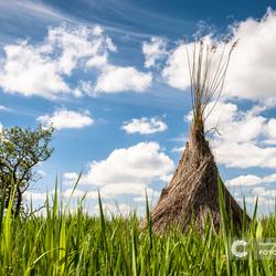 Wigwam in de polder