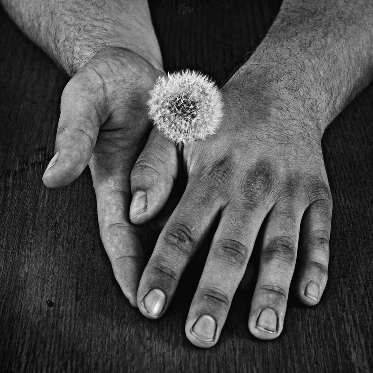 Hands with a Soul