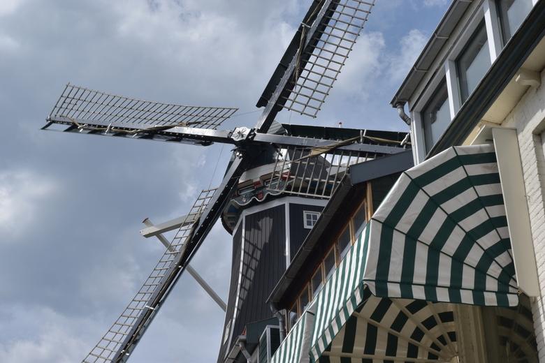 De Adriaan - Haarlem, De Adriaan