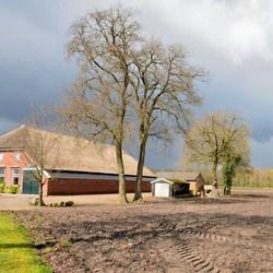 Boerderij in Drenthe