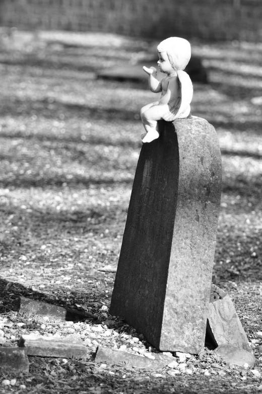 oude kerkhof - Nog een van het oude kerkhof welke mogelijk een van de foto's voor mijn presentatie van het eindwerk van de cursus wordt. Ben er n