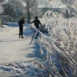 Winter in Holland2