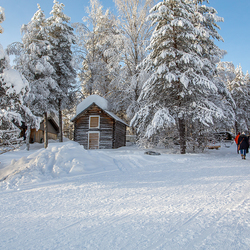 Lapland 8 Joop Lankhaar