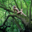 puur natuur 1
