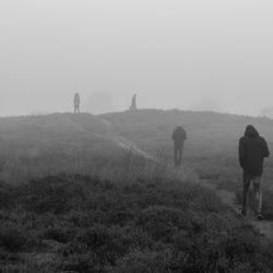 Gasterse duinen in de mist