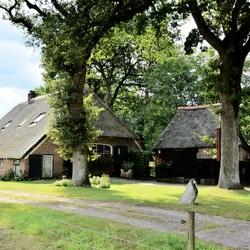 Wonen in Oud Aalden.