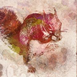 Bewerking: Retro Squirrel