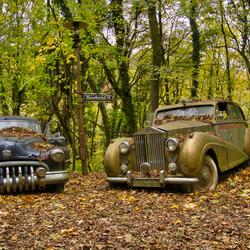 Rolls Royce, Buick en Mercedes