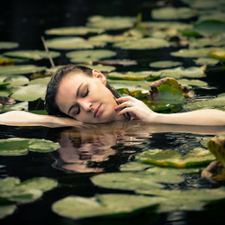 In a bed of lilies...