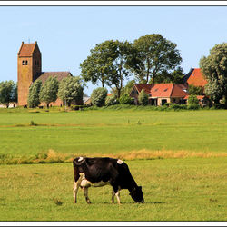 Friesland 2013