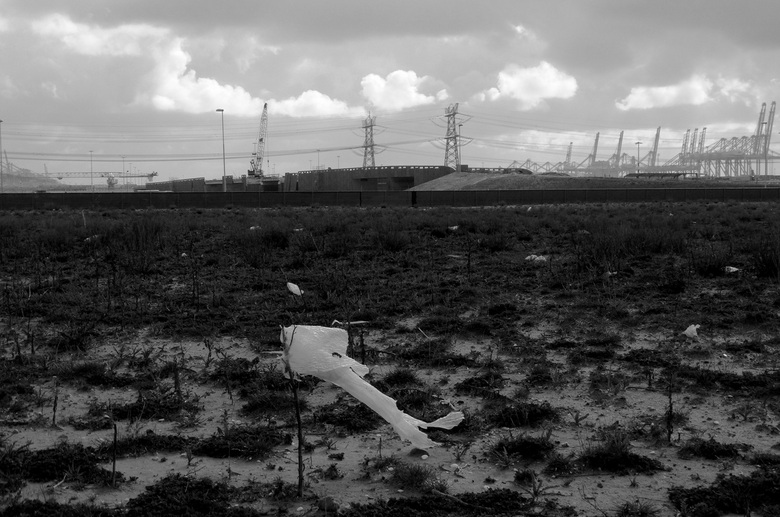 Bewerking: Maasvlakte IV - zwart wit versie