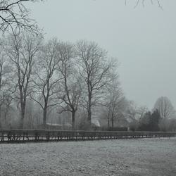Nevel sneeuw