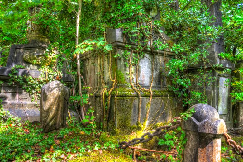 Begraafplaats Ukkel - Overwoekerd graf