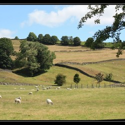 Engelse landschap