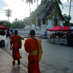 Laos, walking monks