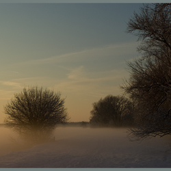 sneeuw en mist bij Zwingelspaan