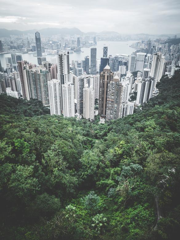 Hong Kong - Het indrukwekkende contrast tussen natuur en beton.<br /> <br /> Volg me gerust op: https://www.facebook.com/ShotByCanipel/ <br /> http