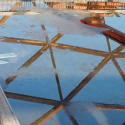 reflectie Amazonica
