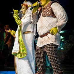 Shrek musical - premiere