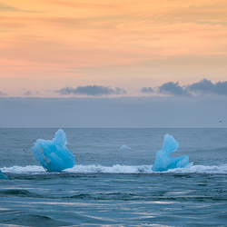 Gletsjer-art - IJsland