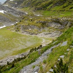 Alpendal