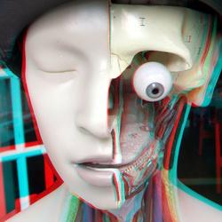 Half-hoofd Dordrecht 3D
