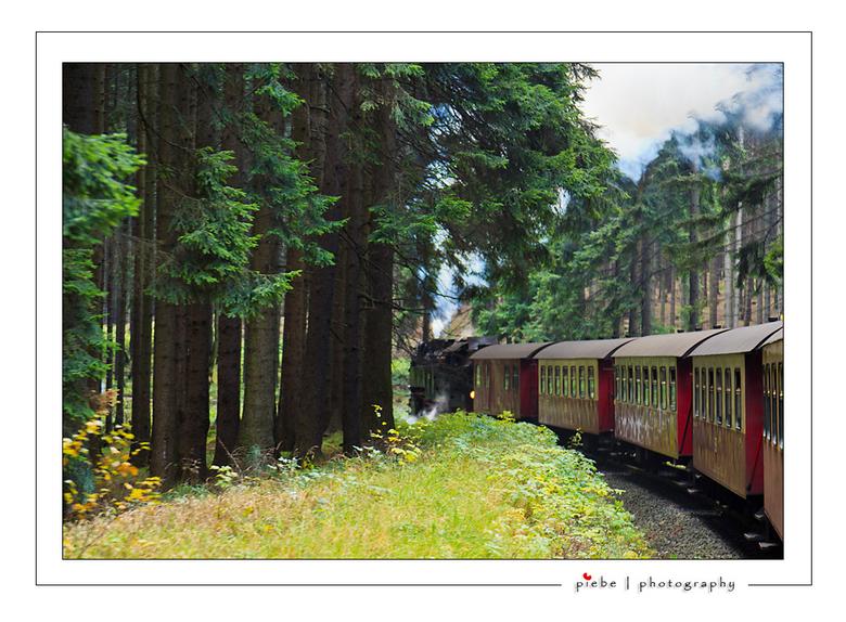 Brockenbahn  - Op 24 oktober zijn we met de Brockenbahn (voormalige DDR) naar de hoogste top van de Harz in Duitsland geweest. Een belevenis om met zo