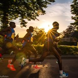 Halve marathon Zwolle