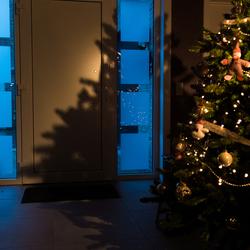 In de schaduw van de kerstboom staat het nieuwe jaar voor de deur!