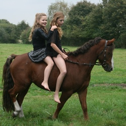 girls and horses