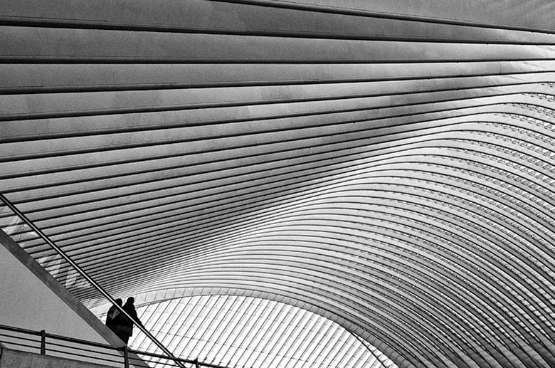 Guillemins lijnen zwart wit 1.jpg - Het is een uitdaging om de prachtige lijnen van het station Guillemins in Luik te fotograferen.
