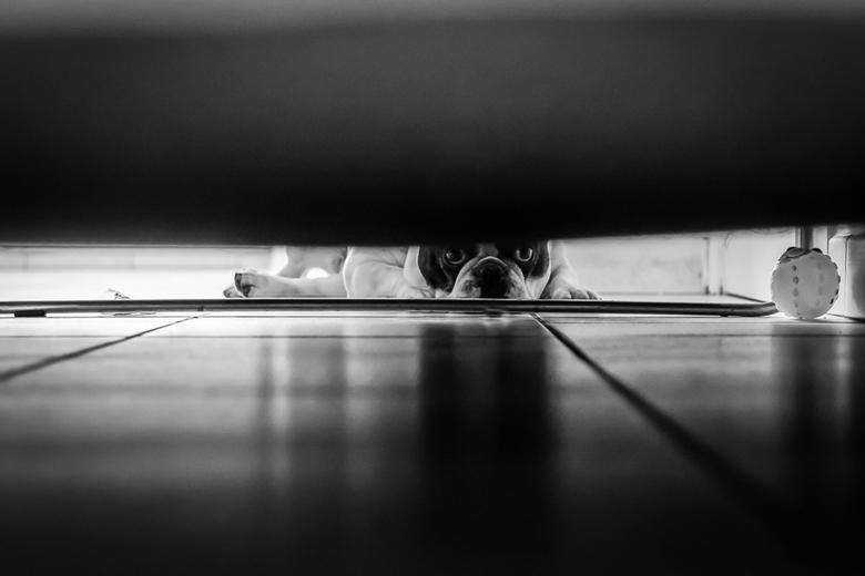 als het balletje onder de bank ligt -