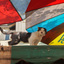 poes bij parasoold