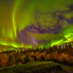 Aurora Borealis in Reykholt Ijsland 2015