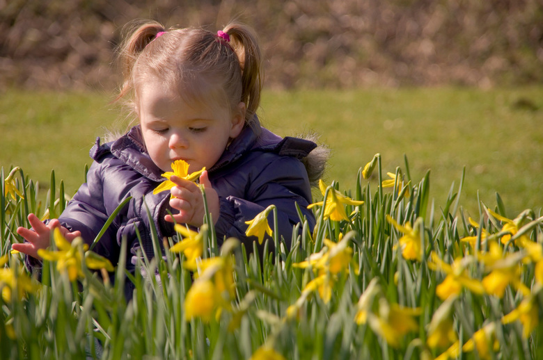 Genieten van de lente - Prachtig hoe deze kleine meid geniet van de geur en de aanraking van de bloeiende voorjaarsbrengers