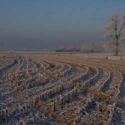 Winterlandschap 1