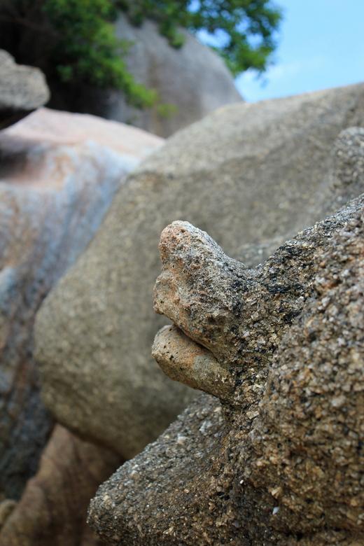 Schildpadrots - De vorm van de kop van een schildpad in een  rotspartij op Koh Samui, Thailand.