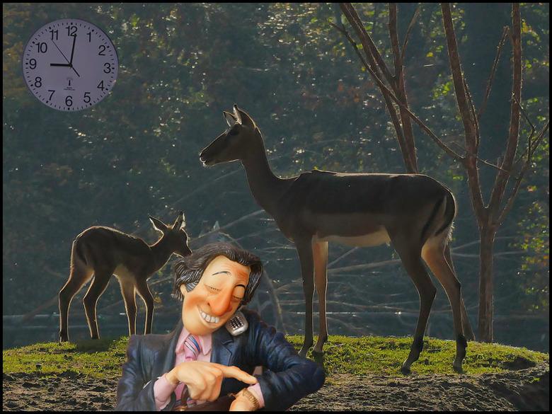 avondklok op negen uur komt er........... - en dat gaat er dan zó uitzien...............<br /> <br /> &#039;t is tijd, de dieren moeten op stal.....