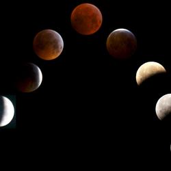 eclipsbloedwolfmaan210119-1