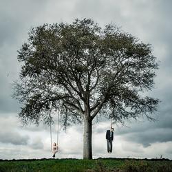 FAMILY TREE ...