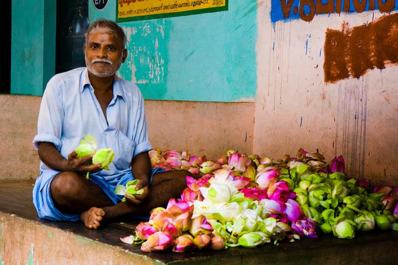 Bloemenverkoper - Er worden dagelijks veel bloemen geofferd in alle tempels, dus zijn er aparte markten voor bloemen. Deze meneer verkoopt alleen maar