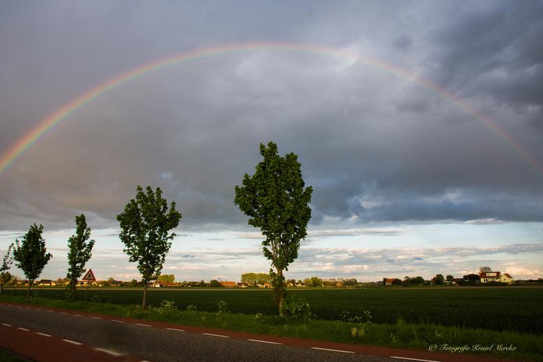 Regenboog -