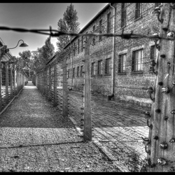eindeloze afrastering_Auschwitz-Birkenau