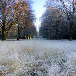 Arboretum Esbeek