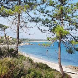 Corsica - Marine de Bravone